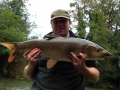Sussex Barbel