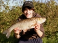 Sussex Chub