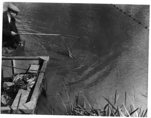 oldies fishing 1