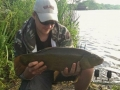 Sussex Tench